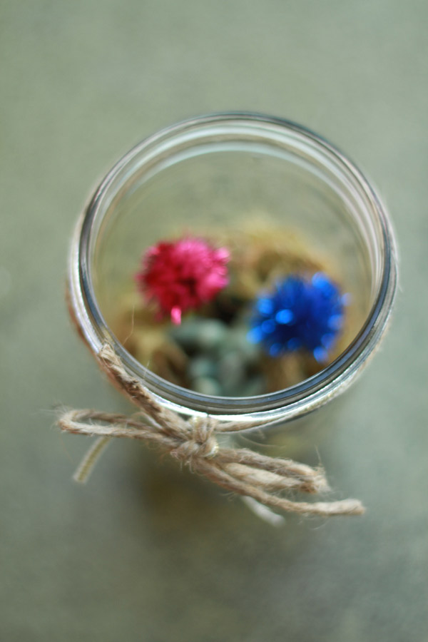Holiday mason jar terrarium with succulents
